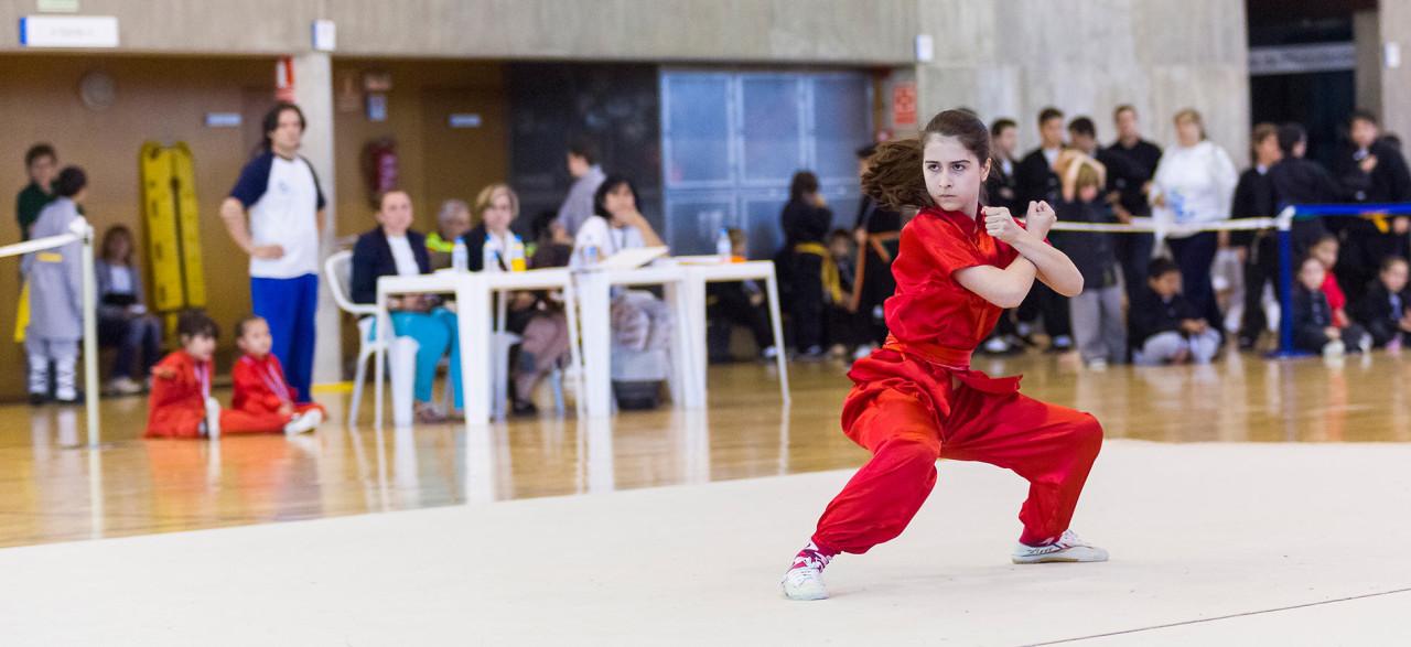 Torneo de Wushu